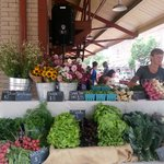 Wed afternoon vendors