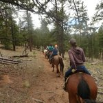 Horseback riding trail. Totally awesome experience