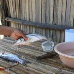 Fresh fish lunch on the Lagoon