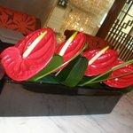 flores frescas em todo hotel