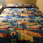 The lovely quilt!