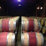 Reused oak barrels