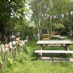 Lovely garden...