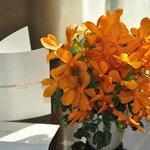 Un bouquet d'orchidées dans la chambre