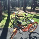 Bikes you can borrow for a ride