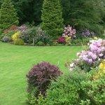 The Garden from the front door.