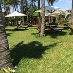 Beautiful tropical gardens