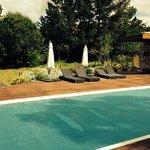 The pool & garden area
