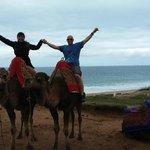 Paseo en camellos por Tanger.