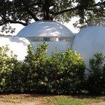 La burbuja Antares