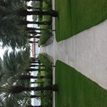 Beautiful grounds and tree lined walkways