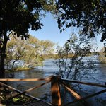 This is the view from our room on the banks of the Zambezi River