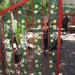 Artistic unique gate