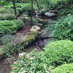 Garvan Woodland Gardens