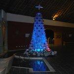 L'albero di Natale alla reception!!!