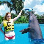 me and zeus my dolphin