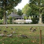 公園の中の、中央駅に近い方の池