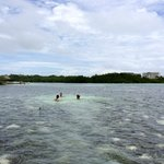 Open water pool