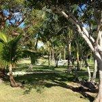 Manicured lawns & comfy hammocks everywhere