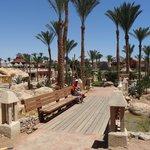 Radisson Blu Sharm 9