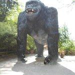 King Kong at Wookey Hole