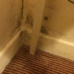 Mould in the corner, it goes right behind the bed.