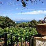 Las vistas desde la terraza... lo unico bueno...