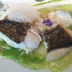 Fisk (seabass)