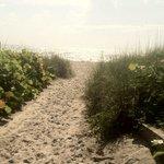 Path from International Palms Tiki Bar to Beach