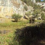 El río cubierto con nenúfares.