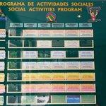 Activity Schedule