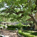 Restaurant & garden