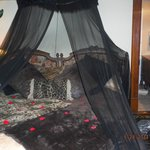 Kipling Room-Bed
