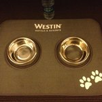 Doggie bowls courtesy of The Westin