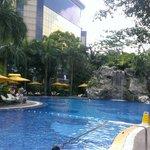 Sub tropic paradise
