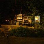 Вход на ночное сафари