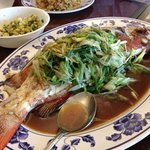 Streamed fresh grouper! A fanastic dish! Awsome taste!