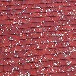 Coins on roof of Priest's Residence