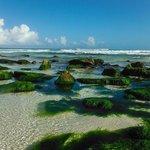 Caminando a Playa Maroma