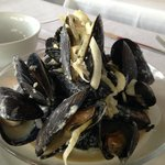 Steamed Cape Cod Mussels