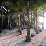 Walking the island