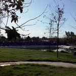 Bosque Urbano Torreon