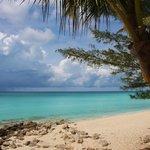 scenery around Bimini