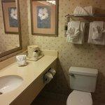 Generic bathroom