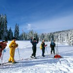 Activités - ski