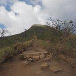 it looks easy but it's not - 1300 steps!