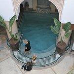 Kleiner Pool im Eingangsgeschoss