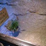Grotta e Giaciglio di S. Francesco - Eremo delle carceri Assisi