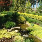 The yellow garden at Ladew Topiary Gardens