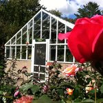 Our greenhouse showcases hundreds of flowers